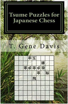 Tsume Puzzles Book